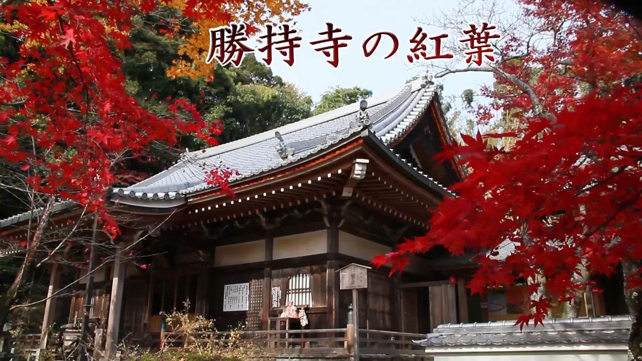 Soujijimp4_000004871_2
